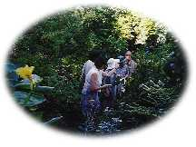 オークランド・ガーデニング家庭と植物園訪問
